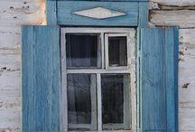 Windows and cat