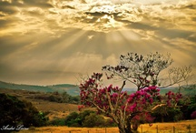 Natura: Sole / Nature: Sun