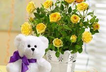 Gifts in hyderabad