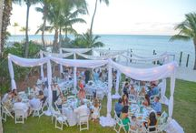 Wedding Draping, Fabulous!