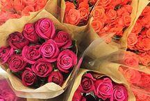 Flores da Paula