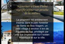 IFC's Portugal Travel / IFC Creatif Destock , propose pour le début de ses activités de partager avec vous une excursion exceptionnelle.   Un séjour au Portugal, entre découvertes culturelles, activités ludiques et sportives. Venez vous ressourcer et profiter d'un climat estival et de paysage divers.  Une maison d'hôte typiquement portugaise saura vous charmez de son histoire, de ses traditions et de son architecture.