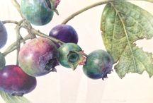 Современная ботаническая живопись