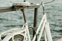 all Bicycle