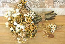 Dried Flowers - Sušené kvety