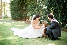 Wedding Puppies / Your furry friend is a part of the family so they should also be a part of your wedding day! We love when our brides include their dogs in their photos and even in the ceremony. There's truly nothing cuter than some sweet pictures with man's best friend.  www.beckysbrides.com | Birmingham, Alabama | Wedding Planner | Becky's Brides