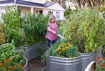 Garden (future)