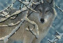 wolves / by Caroline