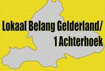 Lokaal Belang Gelderland / Politiek provincie Gelderland