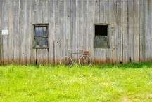 Bikes on the farm / by Frances & Ward Co.