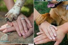 foto matrimonio con cuccioli