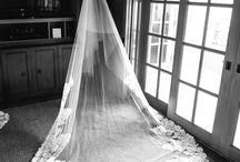 Wedding Vail/hair / by Tara Olson