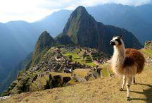 Machu Picchu / Een Incastad in Peru.