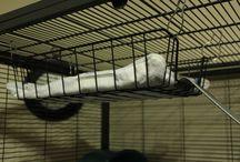 rat cage ideas