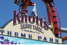Big Family Hotels Near Theme Parks