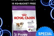 Buy Royal Canin Giant Puppy 15Kg With Free Bucket / Wish you Happy New Year from 4Petneeds Team. We offer only the best natural pet foods For Dog. Buy Royal Canin Giant Puppy 15Kg With Free Bucket. Buy @ https://goo.gl/fCHgFW  or Call US @+91-9958228588