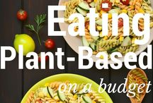 Budget Meals & Recipes / Meals and recipes that can be made on a budget. Frugal living   Cheap meals   Save money   Cut grocery expenses   Cheap recipes   Frugal meals