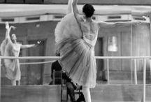 The Art of Ballet/Dance