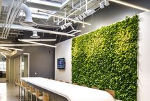 Greenwall Office