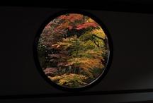 Kyoto, Nara / famous ancient city in Japan / by Aki Kanamori