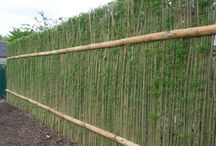 FenceGuides - Bamboo Fencing / Some great ideas for cheap and easy bamboo fencing for your garden.
