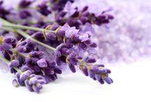 Bitkisel Yağlar / Bitkilerden elde edilmiş şifalı yağların faydaları.