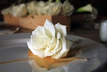 White Flowers / White flowers evoke simple beauty. Fresh floral arrangement dominated by white blossoms convey forgiveness and purity.  / by AboutFlowers