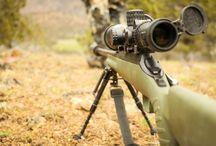 Buy ammo online and learn ballistics