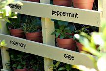 Garden time :-)
