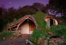 Ideal dwellings / by Nancy Craddock