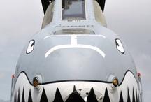 Warthog A10