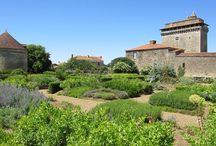 SCA Gardening