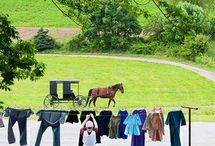 Vacation to Amish country / by Melissa Widga