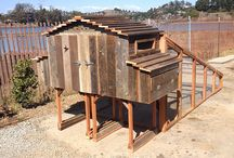 Chicken Coops / by Urban Garden Workshop