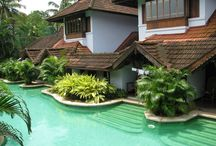 honeymoon in munnar / Honeymoon in Munnar is among those honeymoon trips that will make your life like heaven.