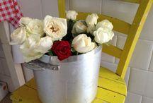 le pentole e le rose