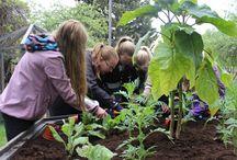 Ihan nurkan takana / Lapset kohtaavat kulttuuriympäristön