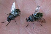 mouche moustique