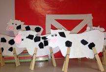 Koeie en suiwel produkte