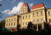"""Kończyce Wielkie - Pałac / Pałac w Kończycach Wielkich w obecnym kształcie wzniesiony pod koniec XIX w. dzięki inicjatywie Gabrieli von Thun und Hohenstein. Dama cesarskiego dworu, wielka filantropka,  zapisała się w pamięci mieszkańców Kończyc Wielkich jako """"Dobra Pani"""". W 1945 majątek został skonfiskowany przez władze ludowe, które w 1952 r. utworzyły tu dom dziecka. W 2007 został sprzedany trzem biznesmenom, którzy zamierzali w nim otworzyć hotel, czego nie zrealizowano i obiekt ponownie został wystawiony na sprzedaż."""