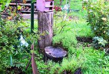 Il mio spazio verde! / Giardino, frutetto e tutto il verde del mio giardino. Piccoli lavori fatti in famiglia.