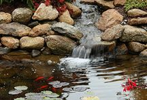 water gardens and green house and potting / My love of water, I love to hear the sound of water, bring me enter peace ...just plain love it.. / by Teah Siegel