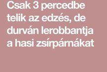edzes