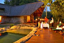 December Stays at Kuname River Lodge / Rest and relax this December at Kuname River Lodge