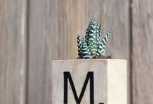 DIY with plant