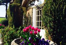 Our Gardens at Putsborough / A collage of photos of historic gardens in North Devon