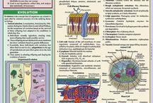 Biologie leren