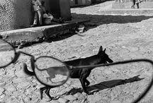 Larry Towell 1953 / Photographe canadien. Membre de l'Agence Magnum.