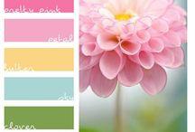 Sets de Colores