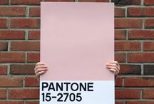 Pantone obsession